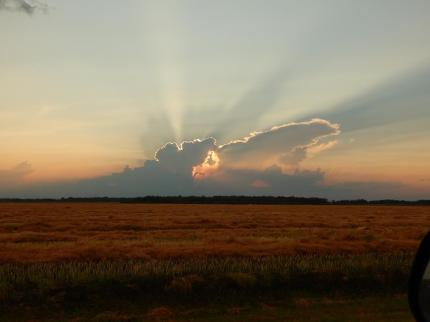Sunset before the storm. Taken near our place.